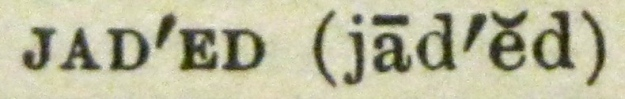 """""""jaded"""" close up from dictionary"""