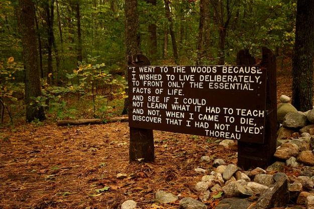 Thoreau's famous quotation, near his cabin site at Walden Pond. Wikimedia Commons