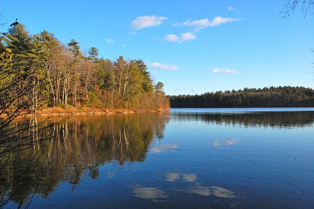 Walden Pond, 2010. Via Wikimedia Commons