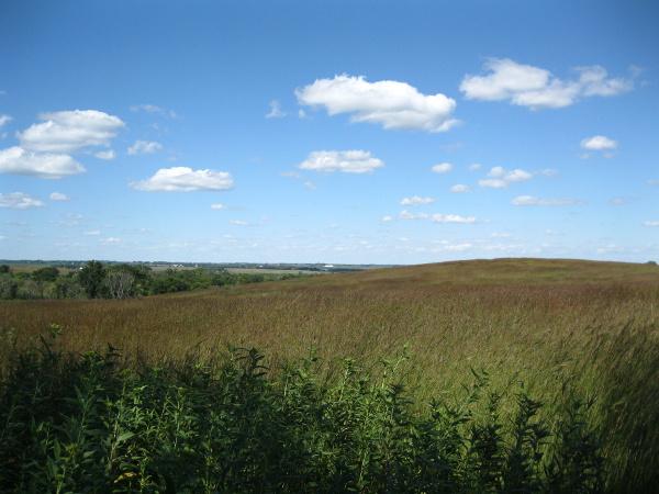 Nine Mile Prairie, Lincoln, Nebraska