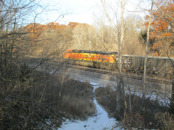 Burlington Northern train passing by Wilderness Park, Lincoln, Nebraska, last November.