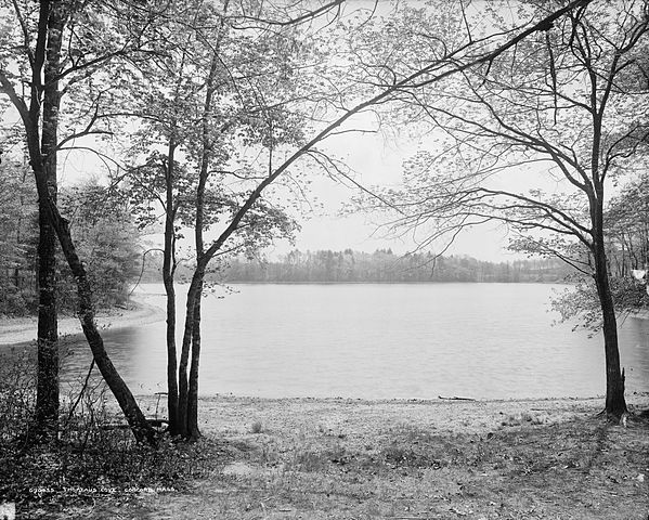 Thoreau's Cove, Walden Pond, Concord, Massachusetts. ca. 1908. Wikimedia Commons