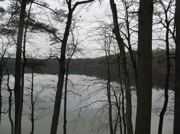 Walden Pond in November. Wikimedia Commons
