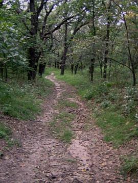Oak Valley Wildlife Management Area, near Battle Creek, Nebraska.