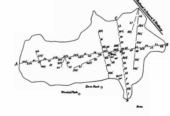 Thoreau's map of his soundings of Walden Pond. Wikimedia Commons